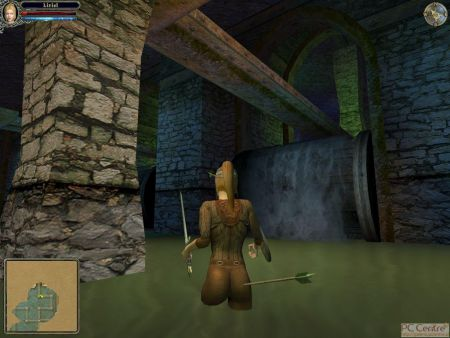 Screen z gry Dungeon Lords